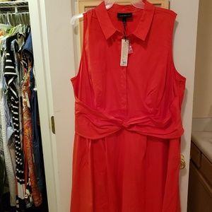 Womens  Lane Bryant dress